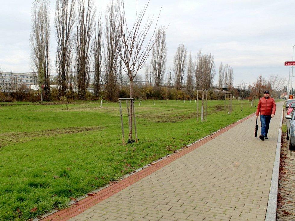V těchto místech v Poděbradech byl měl v nejbližších letech vyrůst plavecký bazén.
