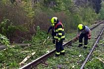 Osobní vlak najel na spadlý strom.