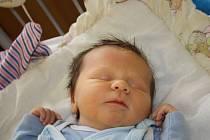 LEXÍK Z NETŘEBIC. ALEX LUKÁŠEK se prvně rozhlédl po světě 28. listopadu 2016 v 17.19 hodin. Sokolík vážil 3 220 g a měřil 47 cm. Radují se z něj maminka Michaela, táta Robert i sedmiletá sestřička Adrianka.