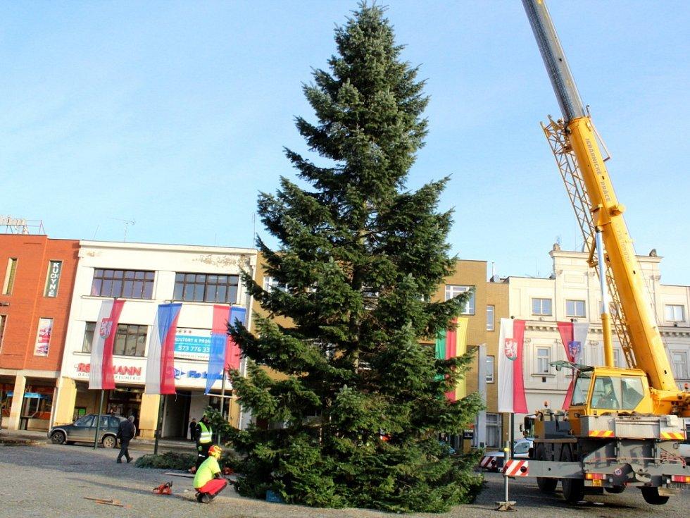 Nymburské náměstí zdobí Vánoční strom, který byl uříznut v Kovanicích.