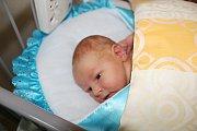 ANNA A JAN MAJÍ JAKUBA. Jakub Horčár se narodil 2. října 2017 ve 14.56 hodin. Po porodu vážil 3 680 g  a měřil 51 cm. Je druhým přírůstkem do rodiny Anny a Jana z Poděbrad po třiapůlleté Kristince.