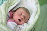 PRINCEZNIČKA ROZÁRKA. Rozálie RAJLOVÁ přišla na svět 2. prosince 2015 v 16.18 hodin. Vážila 2 880 g a měřila 46 cm. Je zatím prvním miminkem maminky Zdeňky a táty Martina. Ti věděli předem, že si z porodnice odvezou domů do Nymburka dcerku.
