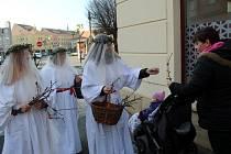 Pohanský zvyk 'Barborky' připomněly v centru Nymburka rozdáváním větviček třešní.