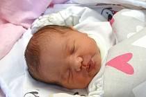 SARAH MARIA Tevi se narodila v pondělí 18. prosince 2017 ve 13.48 Pavlíně Černé a Yannickovi Tevi z Nymburka s mírami 51 cm a 3 710 g.