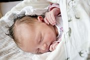 LINDA POHNERTOVÁ se narodila 23. prosince 2018 ve 0.05 hodin s délkou 49 cm a váhou 3 250g. Rodiče Šárka a Tomáš si svou očekávanou holčičku odvezli domů do Prahy, kde už se na ně těšil malý Samuel (2 roky).