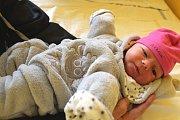 MARTA ELIŠKOVÁ se narodila 16. února 2018 v 19.52 hodin s výškou 49 cm a váhou 3 700 g. Z prvorozené se radujií rodiče Alena a Jakub z Lysé nad Labem.