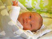 ŠÁRKA HUTNÍKOVÁ se narodila 3. února 2018 v 5.42 hodin s výškou 49 cm a váhou 3 200 g. Doma v Cerhenicích se z prvorozené a předem prozrazené holčičky radují rodiče Petra a Michal.