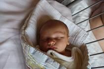 O MATĚJOVI SE VĚDĚLO. MATĚJ HEREL je klouček narozený 15. května 2016 v 21.23 hodin s mírami 3 060 g a 48 cm. Rodiče Iva a Roman tak přinesli domů do Nymburka  Darkovi (4) brášku. Ten je rád!