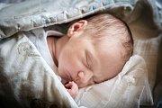 TEREZIE VETEŠNÍKOVÁ se narodila 18. prosince 2018 ve 3.45 hodin s délkou 50 cm a váhou 3 170g. Pro novopečené rodiče Marušku a Jirku byla holčička překvapením a společně odjedou domů do Nymburka.