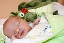 LUKÁŠKA HLÍDÁ DRAK. Maminčin drak Lukáše Kramse hlídá od narození, tedy od  čtvrtka 31. ledna 2013 10.20 hodin. Tátův jmenovec po porodu měřil 50 cm a vážil 3 740 g. Rodiče Petra a Lukáš si syna odvezou domů do Nymburka za brášky Sebastianem a Gabrielem.