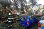 Strom v policejním školícím středisku v Sadské spadl na dva vozy, jeden z nich měl policejní polep.