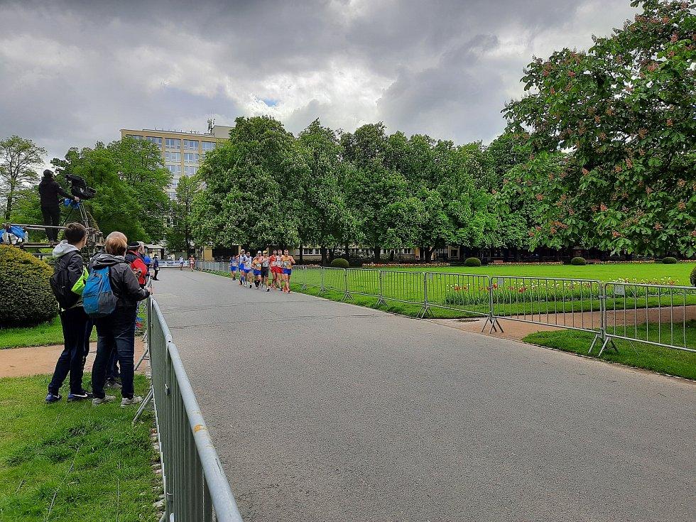 Dopolední závod na 50 km muži a 35 km ženy.