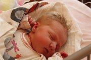 MALÁ SLEČNA ADÉLKA. ADELE BIASUTTO se narodila 22. dubna 2017 v 18.20 hodin s mírami 3 840 g a 50 cm. Bude doma v Kounicích u maminky  Soni, táty Ivana a sestřičky Ellen (2).