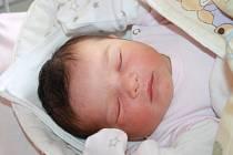 KAROLÍNKA JE TŘETÍ. Karolína KOVÁCSOVÁ přišla na svět 20. května 2015 ve 12.24 hodin s mírami 3 790 g a 47 cm. Maminka Věra a táta Martin si ji odvezli domů do Nymburka, kde se jí už nemohli dočkat dvouletý Martínek a pětiletá Natálka.