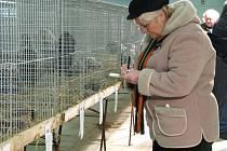 V Lysé ještě v sobotu a v neděli trvá výstava Náš chovatel
