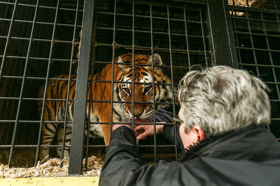 Letos na jaře při návštěvě Cirkusu Jo - Joo v jeho zimovišti ve Zbožíčku.