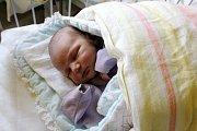FRANTIŠEK Z NYMBURKA. František Švejdar se narodil 13. listopadu 2017 ve 13.16 s mírami 3 770 g a 50 cm. Rodiče Alice a Pavel jej odvezou do Nymburka k sestře Anetce (3).