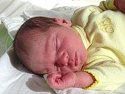 VOJTÍŠEK KÁŠ se narodil 8. března 2018 ve 3.02 hodin s délkou 51 cm a váhou 3 330 g. Radují se z něj rodiče Lenka a Jiří a doma v Lysé nad Labem na něj čeká dvouletý bráška Oldříšek.