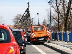 Kácení stromů u mostu v Poděbradech.