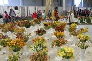 Tisíce květů všech možných druhů, barev a vůní jsou k vidění do neděle na lyském výstavišti.