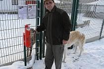 V chlebské zoo zloděj vykradl pokladničky dárců.