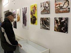 Obrazy Dagmar Chramostové budou v knihovně vystaveny do konce ledna.