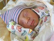 KATEŘINA ROSECKÁ se narodila 1. března 2018 v 9.22 hodin s délkou 45 cm a váhou 2 800 g. Z dcery se radují rodiče Daniel a Lucie z Milovica také pětiletý bráška Tomášek.