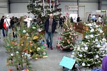 Vánoční trhy na výstavišti v Lysé nad Labem.