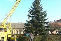 Instalace vánočního stromu v Sadské