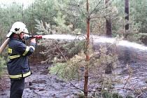 V srpnu zasahovali hasiči u sadského jezera, kde neukáznění turisté zapálili část porostu