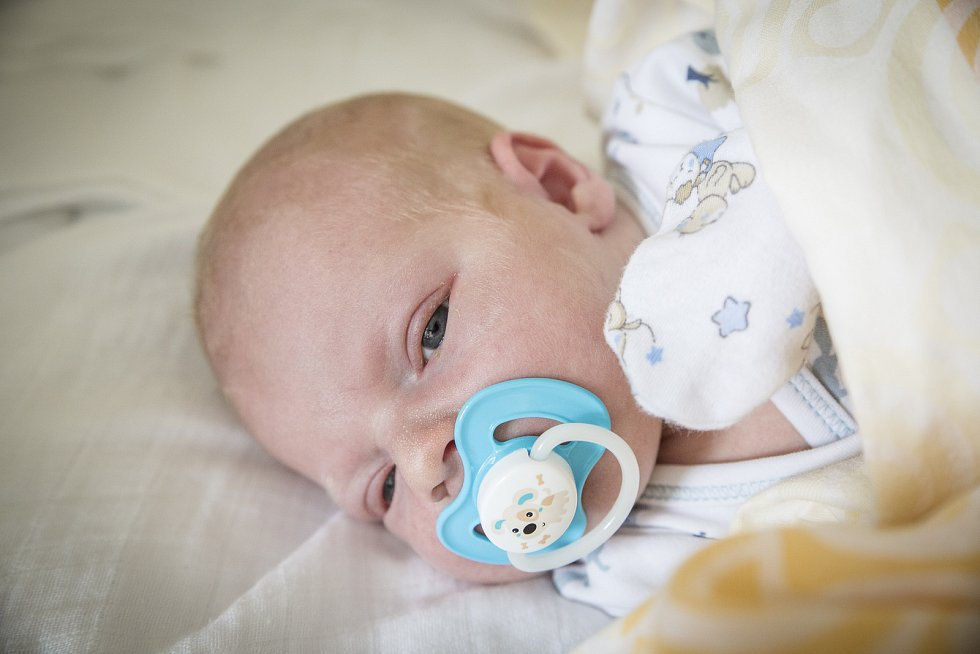 JAN DOLEŽAL se narodil 9. února 2019 v 18.43 hodin s délkou 50 cm a váhou 4 160g. Rodiče Petra a Jan si svého očekávaného prvorozeného syna odvezli domů do Krchleb.