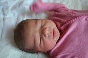 CHARLOTA DVORSKÁ se narodila 21. listopadu 2018 v 6.45 hodin s délkou 48 cm a váhou 3 230g. Rodiče Zuzana a Roman ze Zelenče se na prvorozenou holčičku předem těšili.