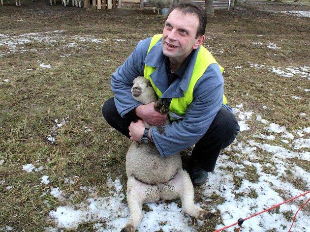 Odsouzený Petr Hokynář složil v Jiřicích zkoušku v oboru chovatel.