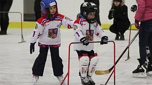 Akce Týden hokeje přilákala na poděbradský zimní stadion třicet dětí
