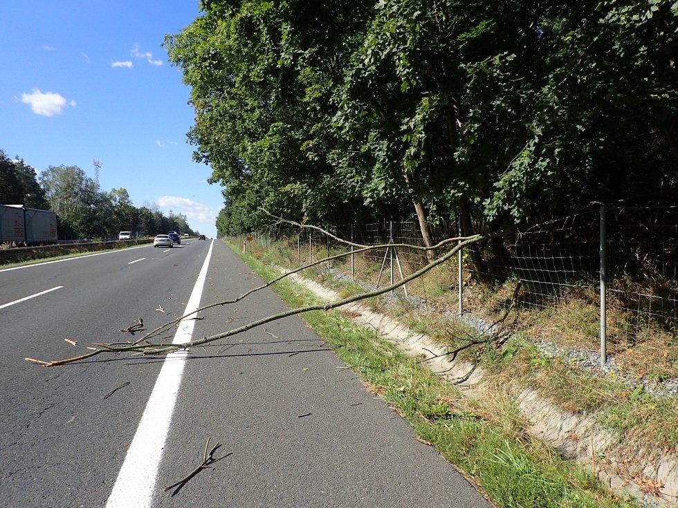 Nejčastěji hasiči likvidovali popadané stromy a ulámané větvě z pozemních komunikací.