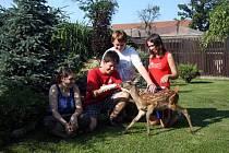 Studenti poděbradského gymnázia pomáhají zraněným a handicapovaným zvířatům.