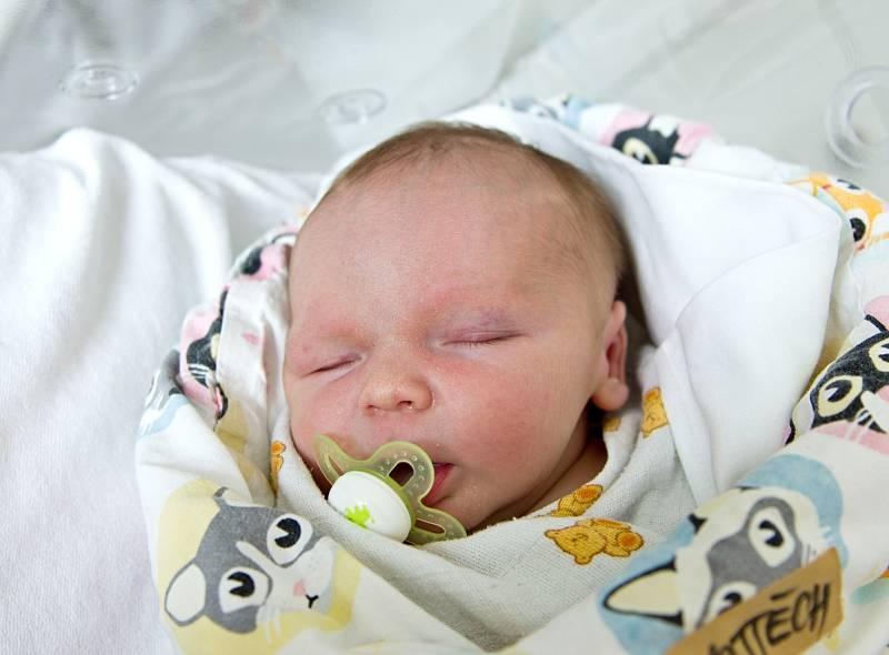 Vojtěch Mrkos z Býchor se narodil v nymburské porodnici 11. září 2021 ve 21.37 hodin s váhou 3650 g a mírou 49 cm. Na chlapečka se těšila maminka Veronika, tatínek Radek a bráška Míša (3,5 roky).