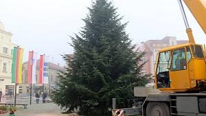 Vánoční strom dorazil z Jizbic