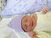 NELA NOVÁKOVÁ se narodila 28. března 2018 ve 13.32 hodin s délkou 51 cm a váhou 3 690 g. Prvorozená holčička rodiče Michala a Petru z Prahy napínala a nechtěla se na ultrazvuku ukázat.