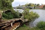 Dva stromy spadly na molo u parkoviště pod Eliškou v Nymburce.