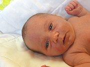 TEREZA KRČILOVÁ se narodila 6. února 2018 v 13.42 hodin s výškou 48 cm a váhou 3 220 g. Radují se z ní rodiče Kamil a Štěpánka z Malého Vestce. Na sestřičku se už těšila také čtyřletá Nikolka.