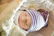 ŠIMON ŠARKÖZI se narodil 22. prosince 2018 ve 22.06 hodin s délkou 45 cm a váhou 2 260g. Maminka Daniela a tatínek Julius chlapečka předem očekávali a doma v Nymburce na něj čekal bratříček Štěpán (11 let).