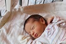 MICHALKA Z KOSTOMLÁTEK. MICHAELA SVOBODOVÁ je princeznička narozená 29. srpna 2017 v 8.48 hodin. Vážila 2 840 g a měřila 48 cm.  Radují se z ní maminka Eva a táta Tomáš, který vybral dcerce jméno. Míšu bude ochraňovat tříletý bráška Davídek.