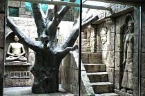 Po mnoha letech čekání se konečně návštěvníci chlebské zoo dočkají otevření opičího pavilonu.
