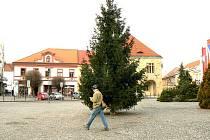 Na tomto mídtě pod nymburským vánočním stromem podpoříme český rekord ve zpívání koled.