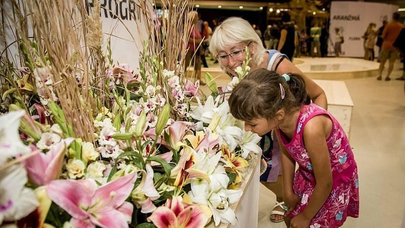 Letní Flora Olomouc láká na krásu květin vrcholícího léta a nabízí inspiraci na založení zelených oáz ve městech i na venkově.