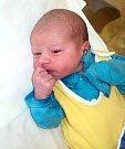 Dominik Vodica, Výšovice, narozen 28. prosince ve Šternberku, míra 50 cm, váha 3480 g