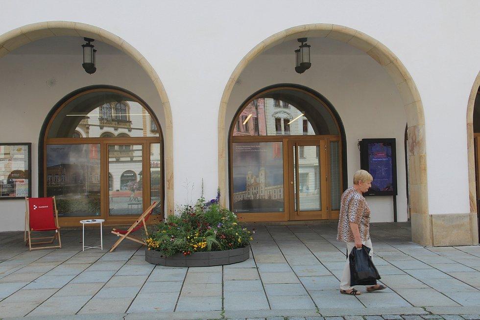 Letničky u informačního centra v podloubí olomoucké radnice