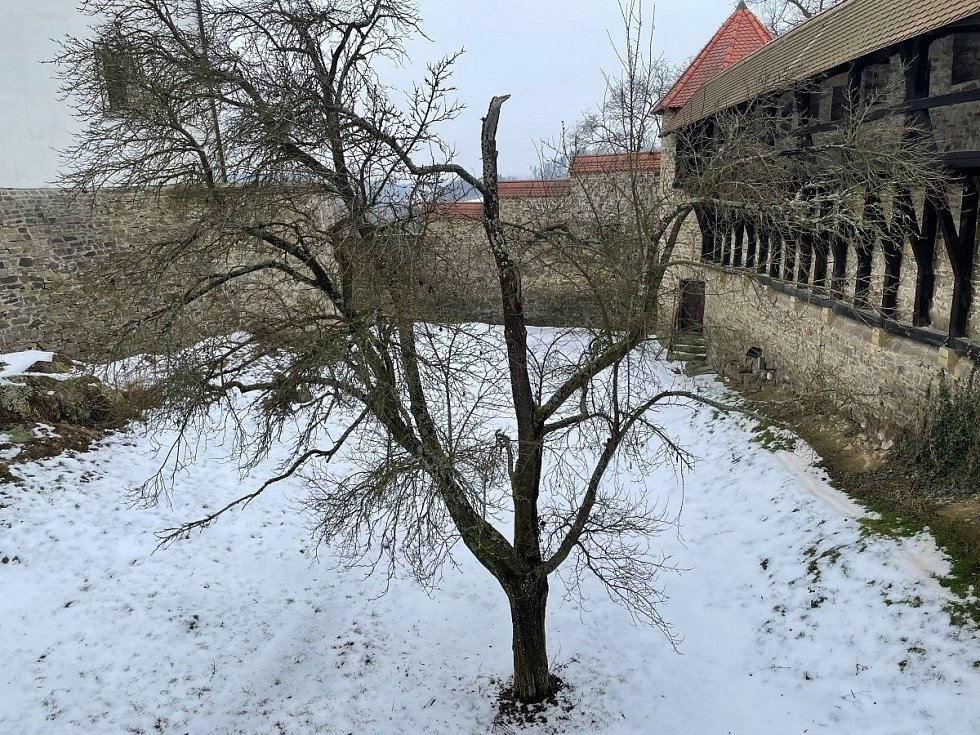 Hrad Bouzov 19. února 2021