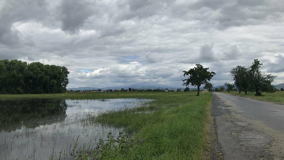 Laguny mezi Stření a Pňovicemi, kde pracovníci obce a dobrovolní hasiči provedli náročný postřik.